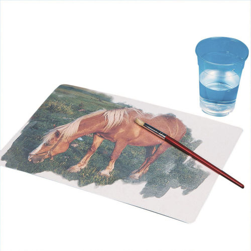 Aquapaintings water-based easy painting set, two each of six designs, butterfly ballooning horse flower fish and bird, size: A4 reusable cards