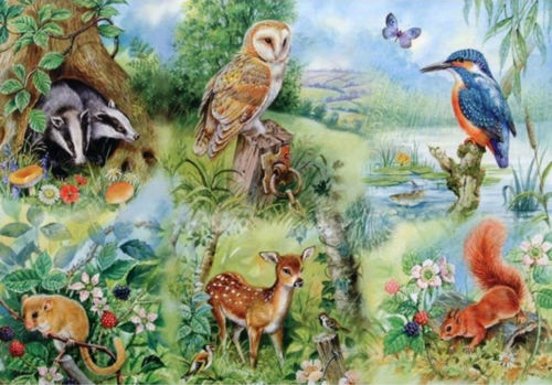 Activities to Share -250 Large Piece Puzzle - Nature Study