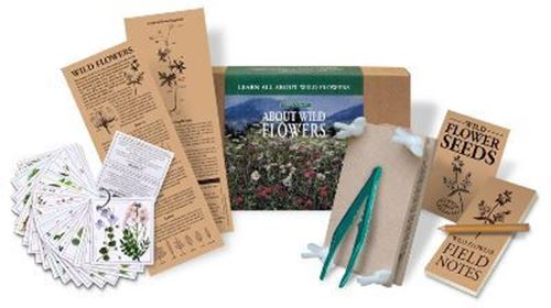 Picture of About Wild Flowers Grow Kit