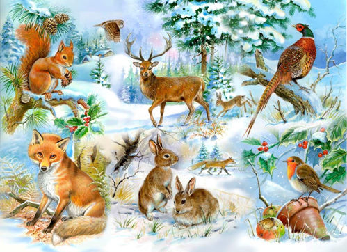 Picture of 250 Large Piece Puzzle - Midwinter