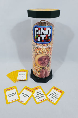 Picture of Find It Game