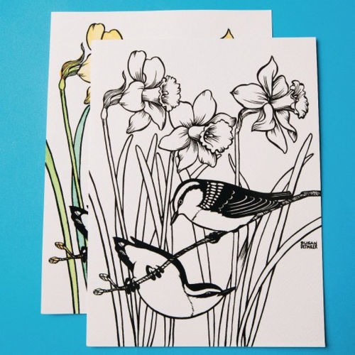 Watercolour Velvet Art Posters (set of 24 assorted), 6 each of 4 designs including coastal scene, birds in daffodills, flowers and lake, plush velvet and watercolour paper, image shows birds with daffodills bold black outlines - one unpainted and one painted behind, Each poster is 23cm x 30cm.
