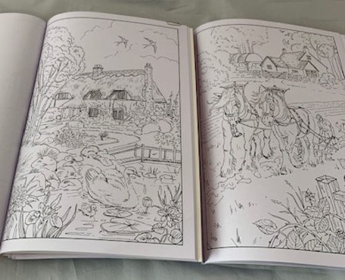 Adult Colouring Books - Country Scenes (pack of 6), images shows detailed black and white outlines of countryside scenes, books show open pages side by side, softback A4 books.