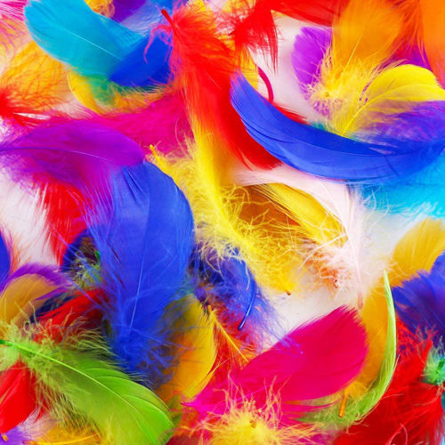 Picture of Craft Feathers