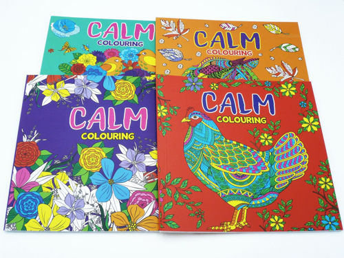 Picture of Adult Colouring Books - Assorted (set of 6 books)